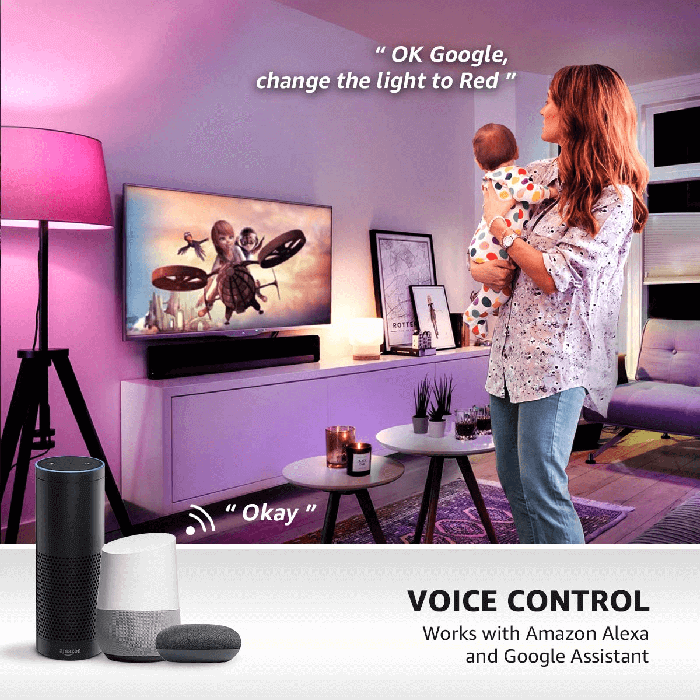 Smart Voice Controlled Lights